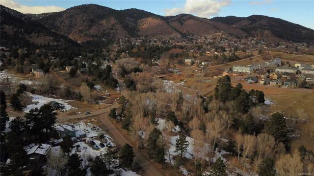 0000 Brook Street, Palmer Lake, CO 80133 (#6121942) :: Harling Real Estate