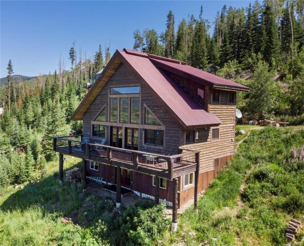 61135 Hill Street, Clark, CO 80428 (#6138537) :: Mile High Luxury Real Estate