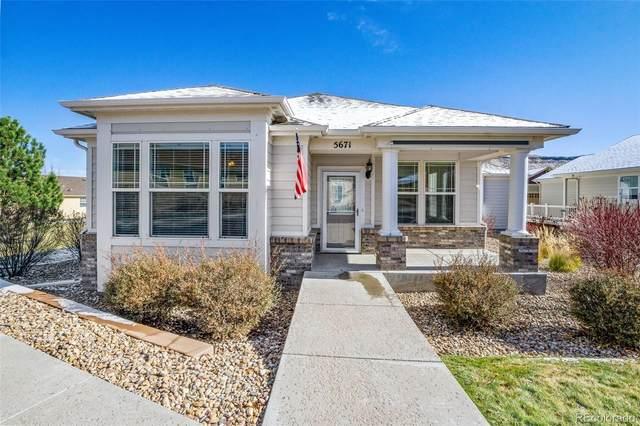5671 Garnet Street, Golden, CO 80403 (#6143573) :: Venterra Real Estate LLC