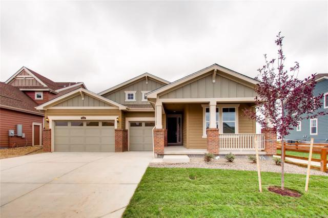 2320 Tyrrhenian Circle, Longmont, CO 80504 (MLS #6232492) :: 8z Real Estate