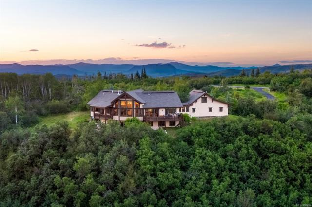28815 Skyline Drive, Steamboat Springs, CO 80487 (#6234918) :: The DeGrood Team