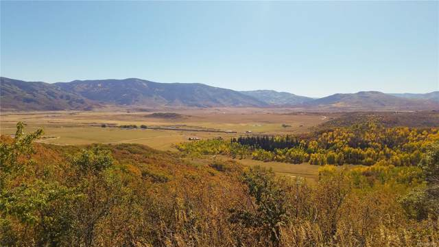 30870 Fawn Lane, Steamboat Springs, CO 80487 (MLS #6269176) :: 8z Real Estate