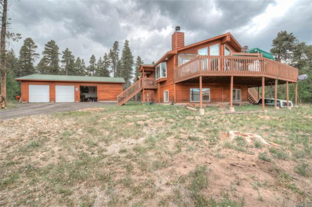1954 Bluestem Way, Fairplay, CO 80440 (#6276474) :: Structure CO Group