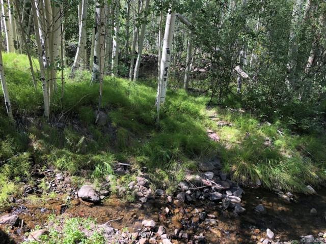 24 Deer Park, Antonito, CO 81120 (#6287541) :: House Hunters Colorado