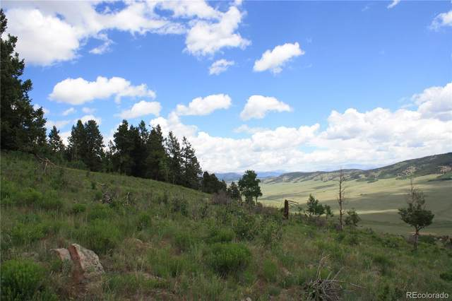 0 Middle Fork Vista, Fairplay, CO 80440 (MLS #6425377) :: Find Colorado