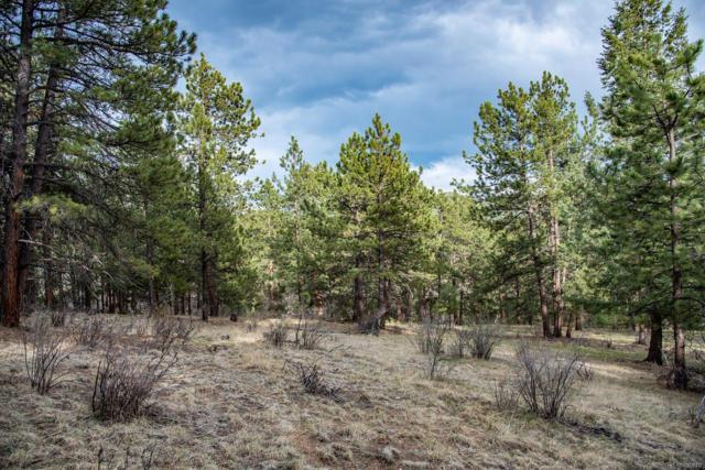 Echo Lake Drive, Evergreen, CO 80439 (#6452844) :: Berkshire Hathaway Elevated Living Real Estate
