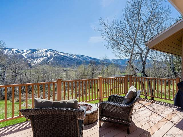 36835 Tree Haus Drive, Steamboat Springs, CO 80487 (MLS #6474580) :: 8z Real Estate