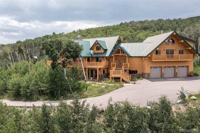 945 Breakneck Pass Court, Fairplay, CO 80440 (#6492048) :: Venterra Real Estate LLC