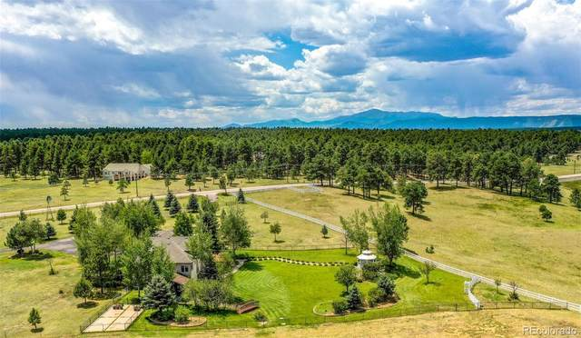 7505 E Palmer Divide Avenue, Larkspur, CO 80118 (#6520647) :: Chateaux Realty Group