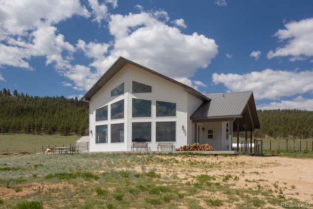 2170 S Thunder Road, Hartsel, CO 80449 (#6629145) :: The HomeSmiths Team - Keller Williams