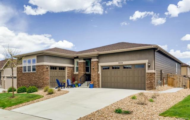 7028 Thundercloud Court, Castle Rock, CO 80108 (#6638926) :: The Heyl Group at Keller Williams