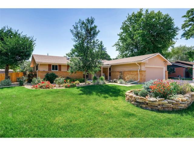 7592 Lee Drive, Arvada, CO 80005 (MLS #6639281) :: 8z Real Estate