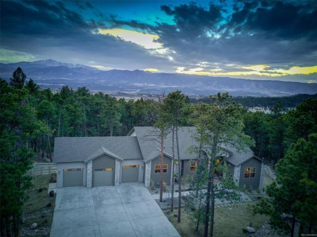 14860 Roller Coaster Road, Colorado Springs, CO 80921 (#6656363) :: Wisdom Real Estate