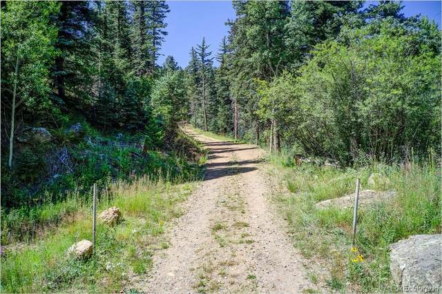 2965 Witter Gulch Road, Evergreen, CO 80439 (#6706503) :: The Harling Team @ Homesmart Realty Group