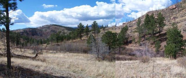 Cochise Trail, Pine, CO 80470 (#6709844) :: Bring Home Denver