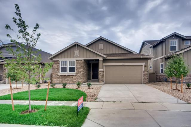 6688 W Jewell Place, Lakewood, CO 80227 (#6787976) :: HomePopper
