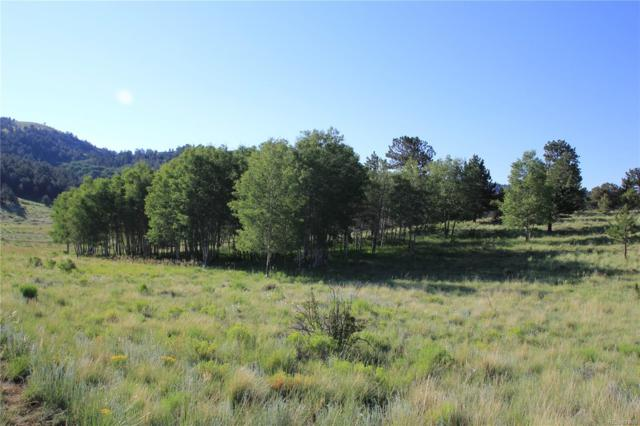143 Pipeweed Path, Westcliffe, CO 81252 (MLS #6794535) :: 8z Real Estate