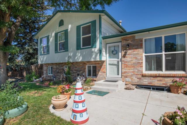 11010 Eudora Place, Thornton, CO 80233 (MLS #6824534) :: 8z Real Estate