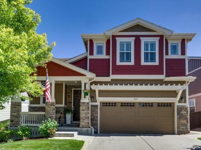 5803 Raleigh Circle, Castle Rock, CO 80104 (#6830202) :: The City and Mountains Group