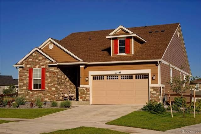 23839 E Narrowleaf Place, Aurora, CO 80016 (MLS #6892597) :: 8z Real Estate