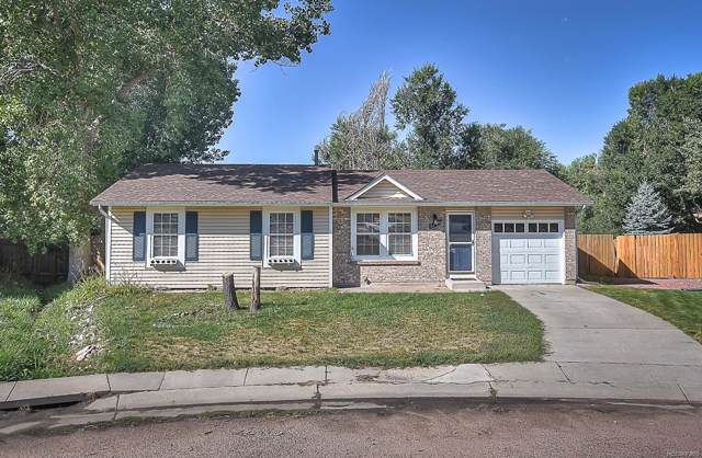 5110 Webbed Foot Way, Colorado Springs, CO 80911 (MLS #6953571) :: 8z Real Estate