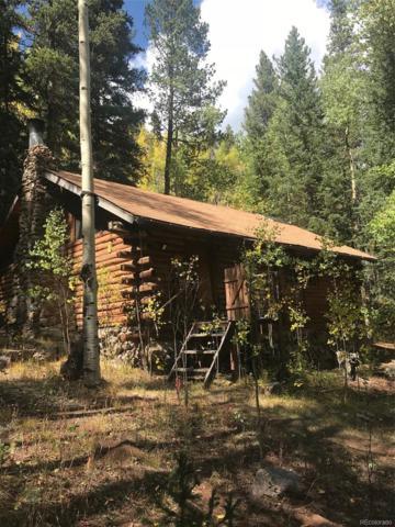 907 Hefferman Gulch Road, Idaho Springs, CO 80452 (#7061677) :: Arnie Stein Team | RE/MAX Masters Millennium