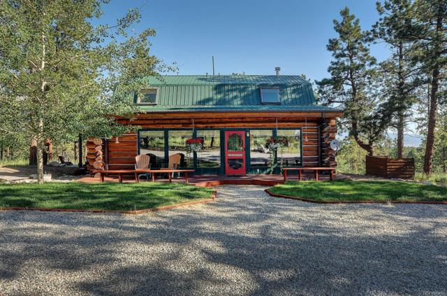 14540 County Road 261 H, Nathrop, CO 81236 (#7144577) :: The DeGrood Team