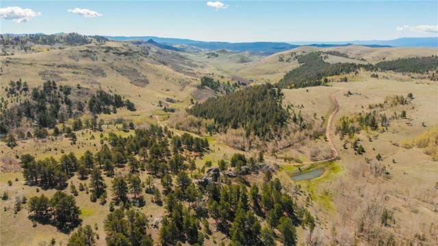 000 Alpine Ranch Circle, Canon City, CO 81212 (#7209154) :: The HomeSmiths Team - Keller Williams