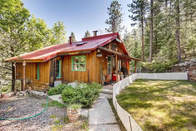 25972 Lines Lane, Kittredge, CO 80457 (MLS #7245780) :: The Sam Biller Home Team