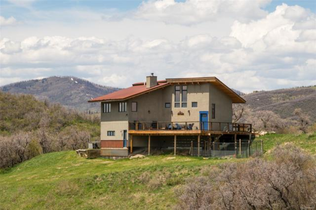 18500 Canyon View Trail, Steamboat Springs, CO 80487 (MLS #7262663) :: 8z Real Estate
