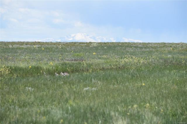 0000000 County 169 Road, Matheson, CO 80830 (#7303511) :: The Healey Group
