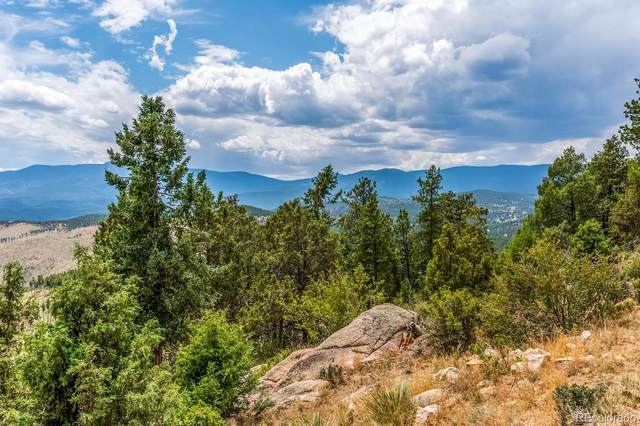 34237 Mineral Lane, Pine, CO 80470 (MLS #7542549) :: 8z Real Estate