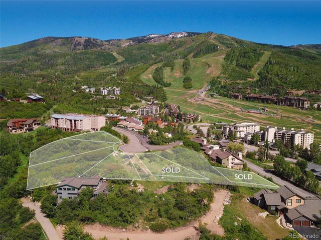 1863 River Queen Lane, Steamboat Springs, CO 80487 (#7609287) :: The Brokerage Group