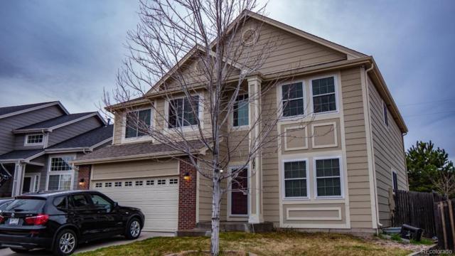 707 Hampstead Avenue, Castle Rock, CO 80104 (#7629482) :: The Peak Properties Group