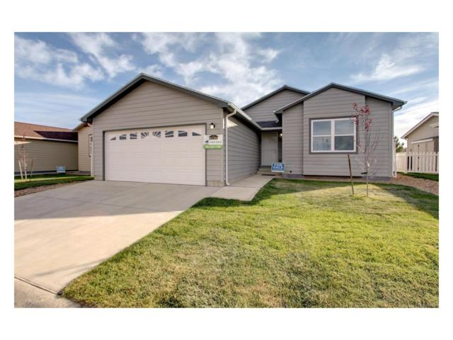 6150 Bluestem Green, Frederick, CO 80530 (#7630217) :: The Pete Cook Home Group