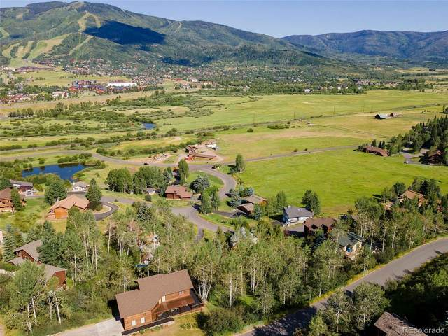 36817 Tree Haus Drive, Steamboat Springs, CO 80487 (#7642077) :: The Brokerage Group