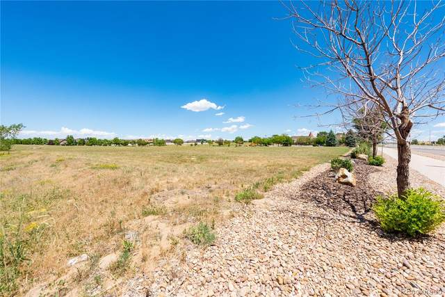 LOT 1 Chapel Hill Drive, Brighton, CO 80602 (#7692334) :: The DeGrood Team