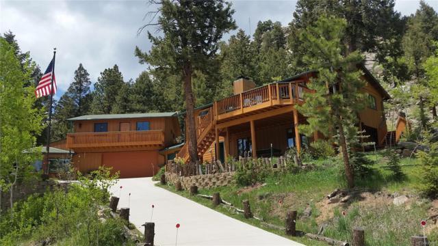 31041 Haldimand Drive, Conifer, CO 80433 (MLS #7774292) :: 8z Real Estate