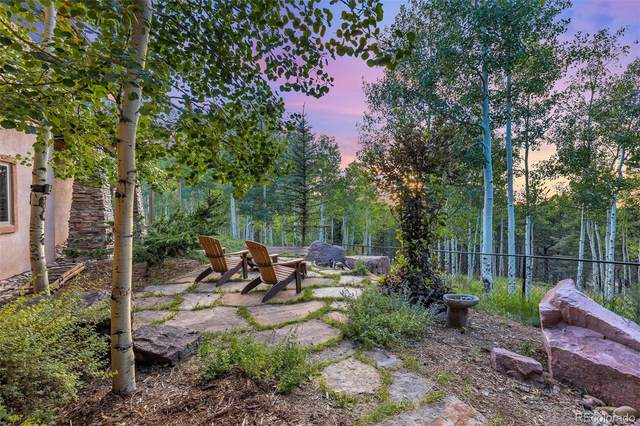 11750 Woodland Road, Woodland Park, CO 80863 (#7831107) :: Berkshire Hathaway HomeServices Innovative Real Estate