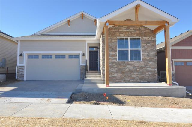 11518 Colony Loop, Parker, CO 80138 (#7960011) :: The HomeSmiths Team - Keller Williams