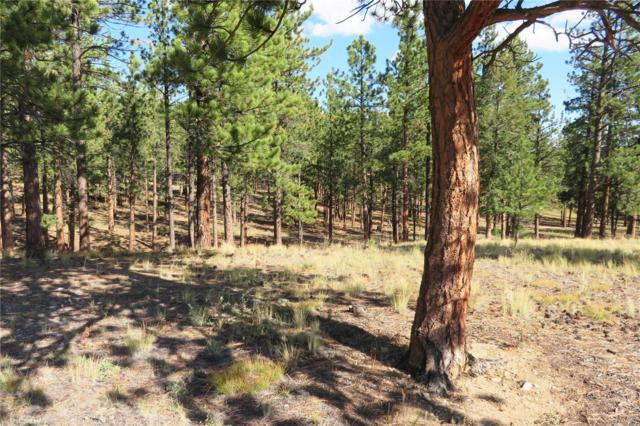 16409 Pine Grove Parkway, Buena Vista, CO 81211 (#8005751) :: Wisdom Real Estate