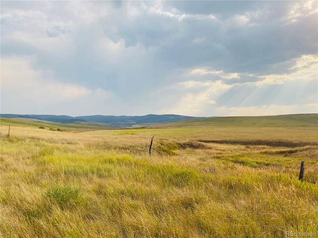 35555 County Road 59, Hayden, CO 81639 (#8098277) :: Portenga Properties - LIV Sotheby's International Realty