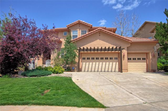 629 Saber Creek Drive, Monument, CO 80132 (#8213207) :: The DeGrood Team