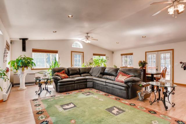 9069 Krashin Drive, Conifer, CO 80433 (#8232627) :: House Hunters Colorado