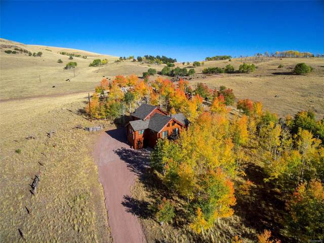 59 Co Road 600, Guffey, CO 80820 (#8327201) :: The DeGrood Team