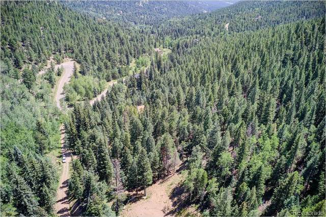 2963 Witter Gulch Road, Evergreen, CO 80439 (MLS #8398468) :: 8z Real Estate