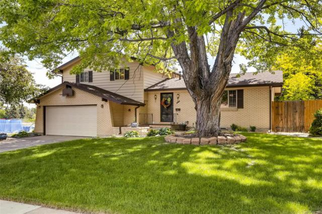 2158 S Dudley Street, Lakewood, CO 80227 (MLS #8399191) :: 8z Real Estate