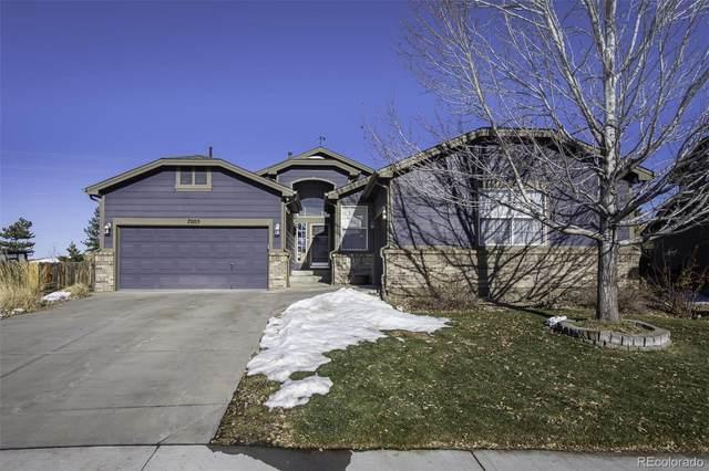 7005 Serena Drive, Castle Pines, CO 80108 (#8553753) :: Wisdom Real Estate