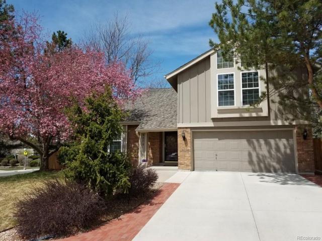 8509 E Nichols Avenue, Centennial, CO 80112 (#8565195) :: The Peak Properties Group