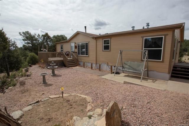 45 Knight Lane, Cotopaxi, CO 81223 (#8568115) :: Bring Home Denver